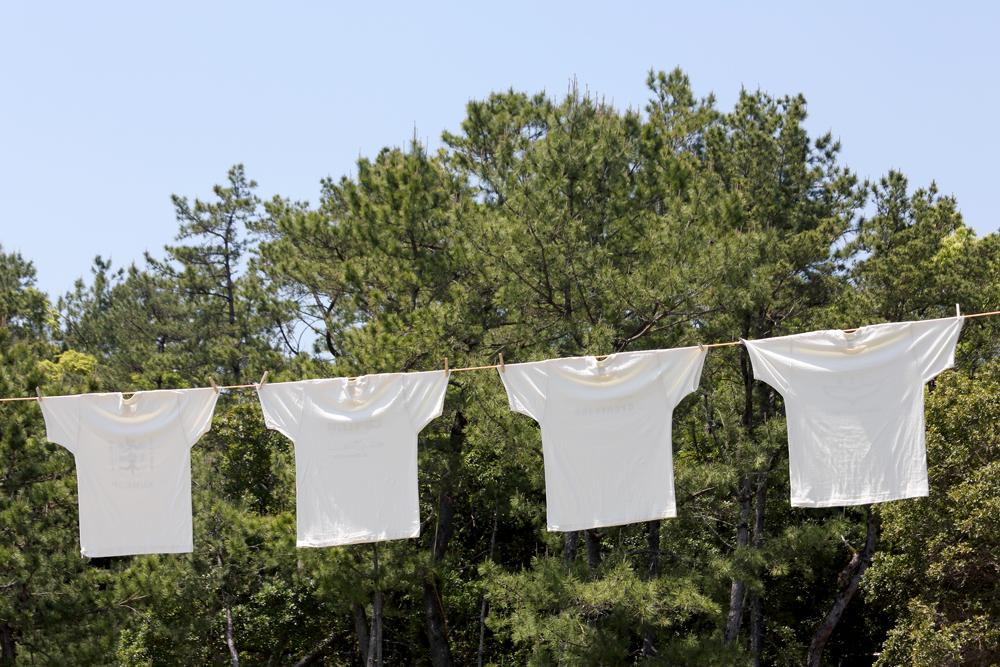 屋外でTシャツを気持ちよく干した画像